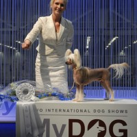 """MY DOG"" Int show SKK in january 2012"
