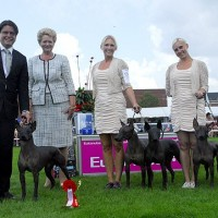 DKK Vejen Day 4 Int show, BIS-1 PROGENY GROUP AGAIN!!, 2422 dogs