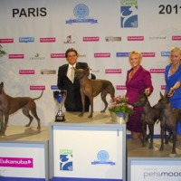 Championat de France - French Winner Show 2011,  BEST IN SHOW-1 Progeny group!! 14 100 dogs entered