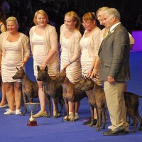 WORLD DOG SHOW in Paris 2011, 21 000 dogs entered - BEST IN SHOW-1 Progany group again!!!!