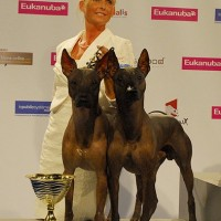 WORLD DOG SHOW in Paris 2011, 21 000 dogs entered - BEST IN SHOW-2 Pair class