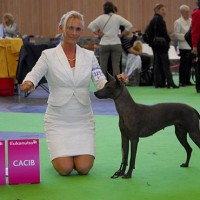 WORLD DOG SHOW in Paris 2011, May I proudly present WORLD WINNER XIBALBA´S ONOC