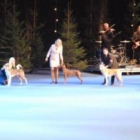 HELSINKI WINNER SHOW - Int show FKK, Helsinki, 4 December 2011